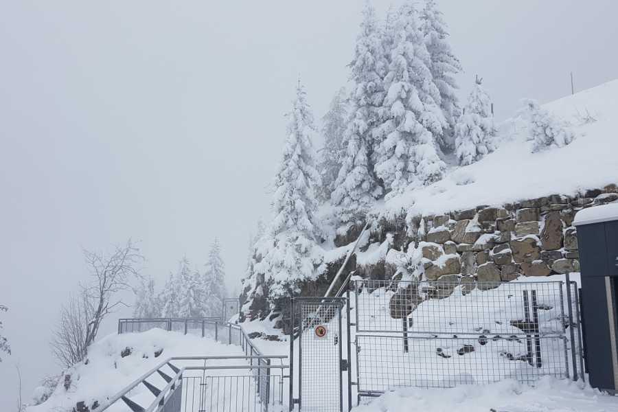 SwissTravelGuide Mt.Stanserhorn Historical Funicular & Cabrio Gondola