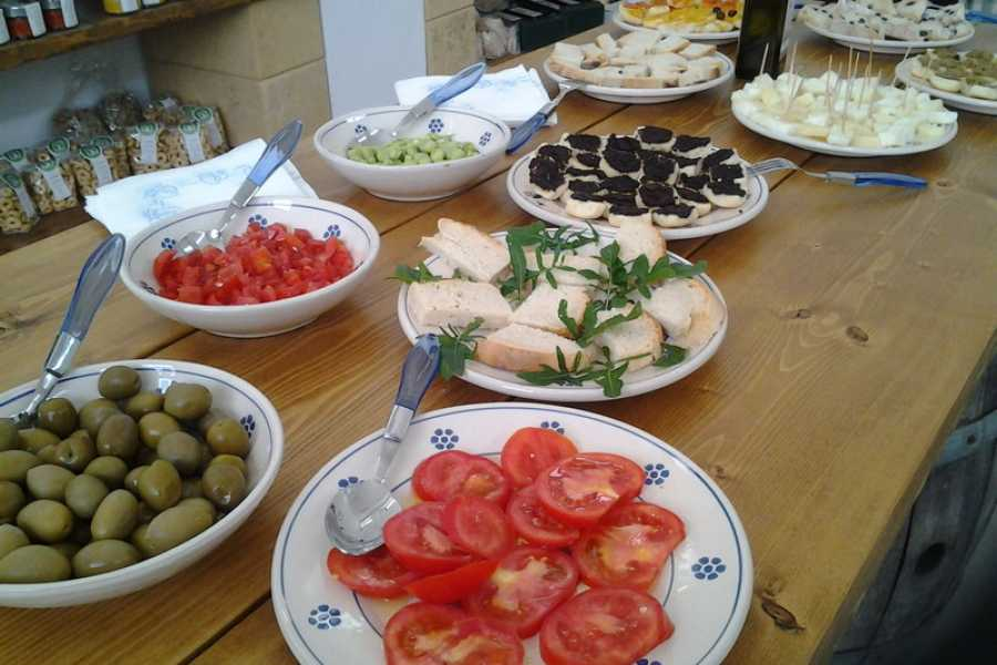 Destination Apulia OIL TASTING AND PIC-NIC IN FIELD