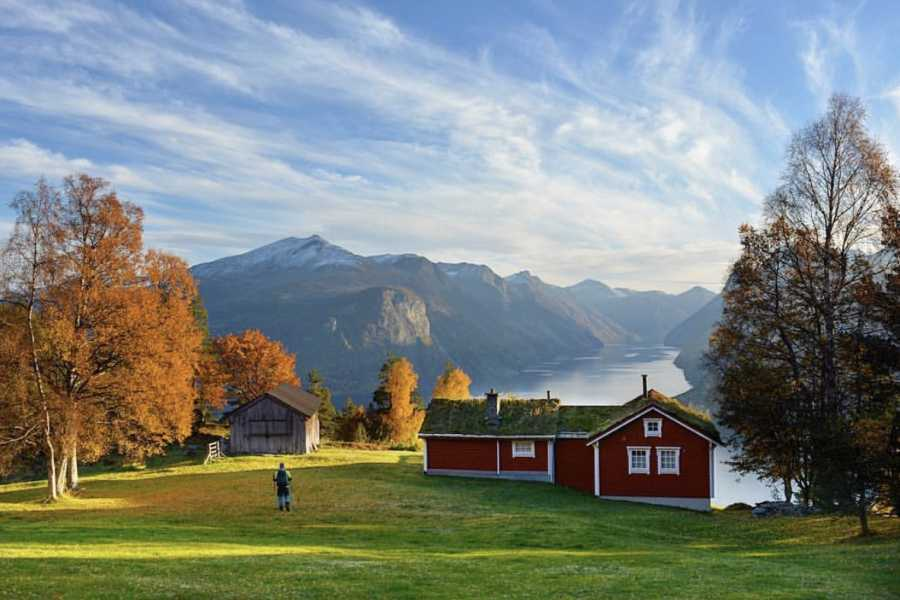Villa Lovise Visit the mountain farm Ansok with a local guide