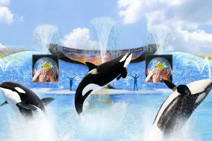 Dream Vacation Builders (SCP2) Southern California CityPASS + San Diego Zoo + Universal Studios Hollywood + Transfers