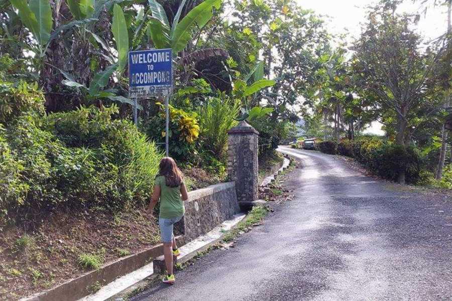 Walkbout International LLC Outdoor Activities - Jamaica: The Walkbout Parish Bicycle Tour Of Jamaica