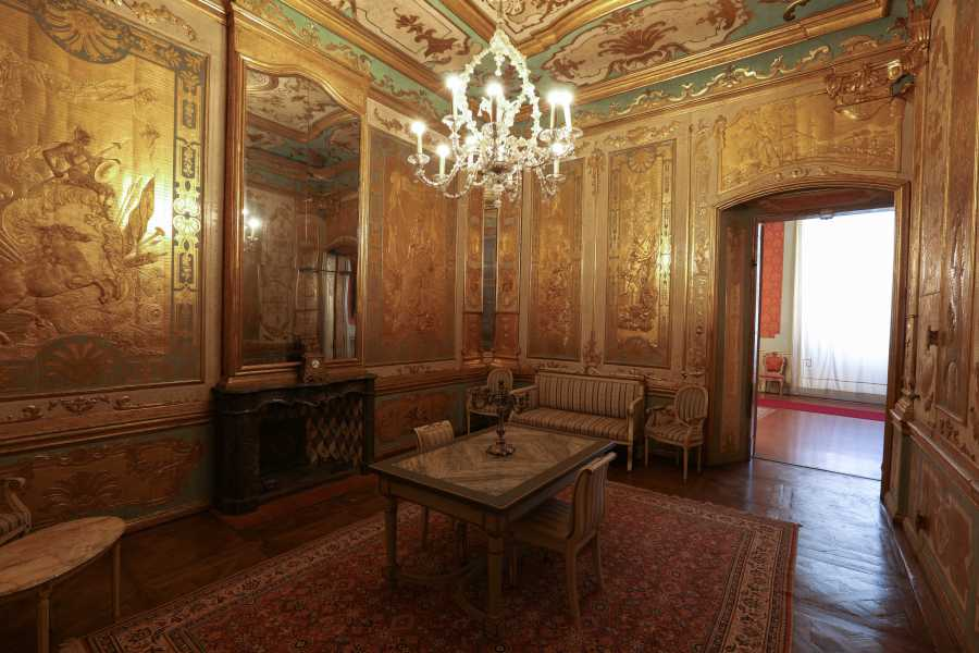 Modenatur Guided tour to Modena Ducal Palace