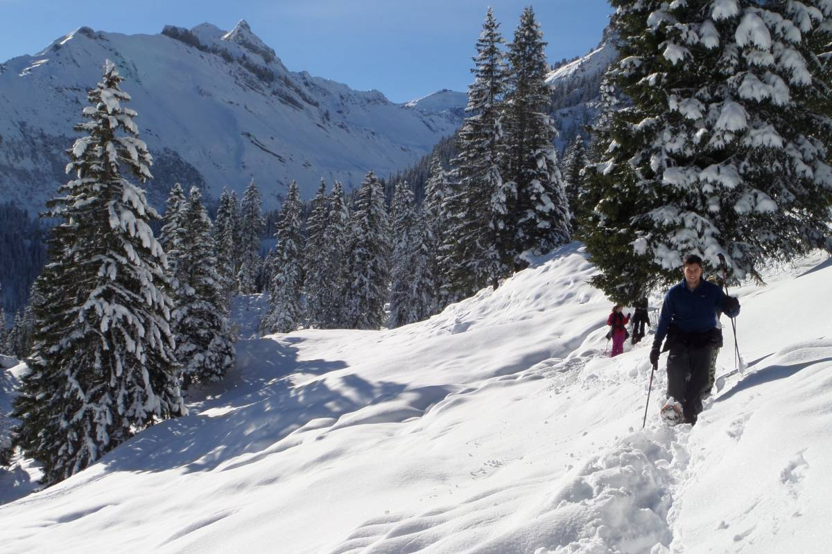 Outdoor Interlaken AG Snowshoe Tour Advanced