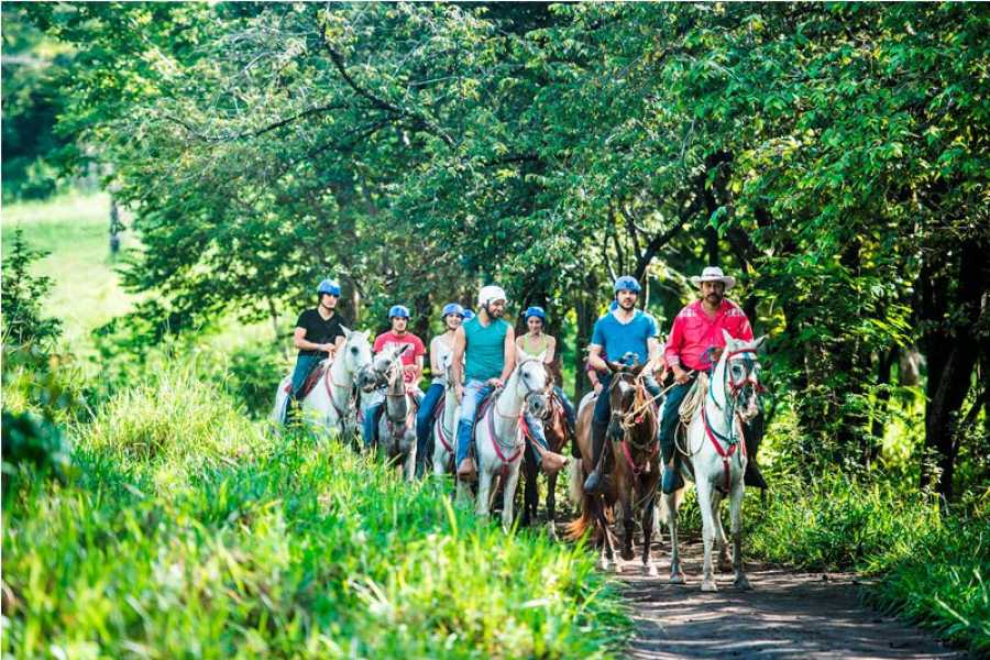 Tour Guanacaste On-Line Miravalles Volcano Eco-Adventure