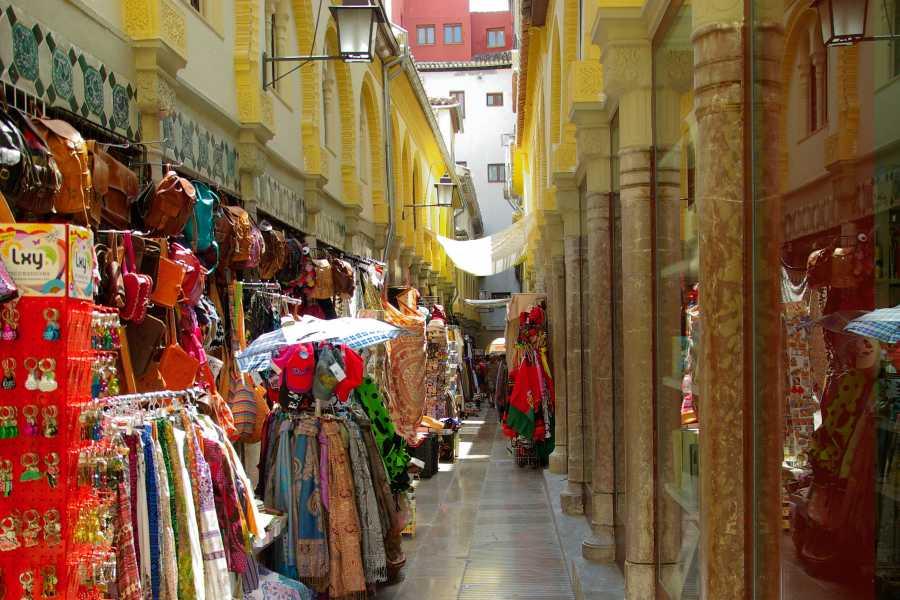 Granada Pass GRANADA PASS 24 HORAS