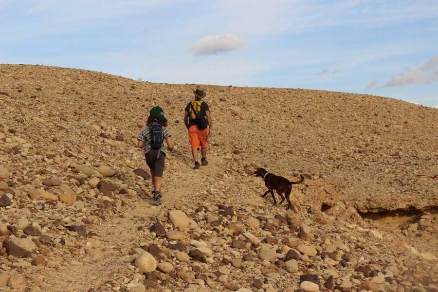 Desert-Pass Desert Escape Game