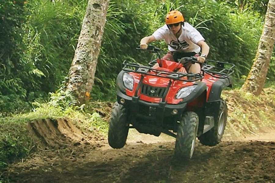 CongoCanopy.com ATV Monkey Sanctuary Combo