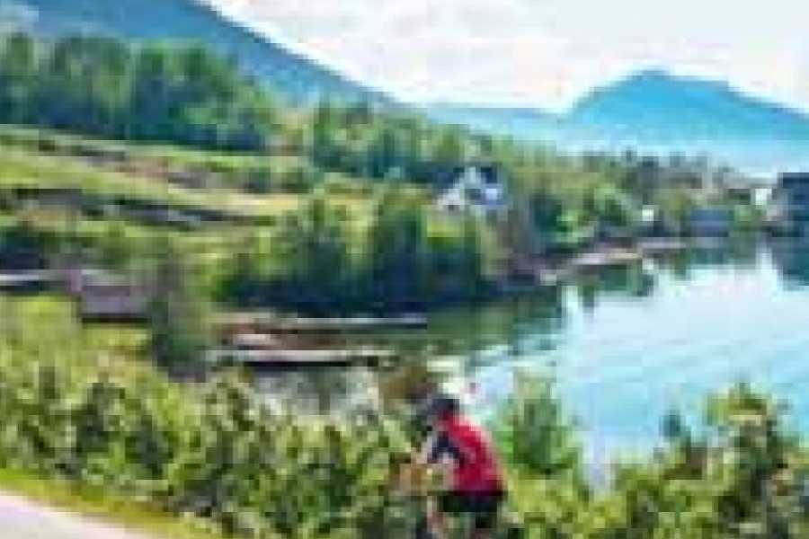 Hardanger Feriesenter AS Bicycle rental - bicycle 8