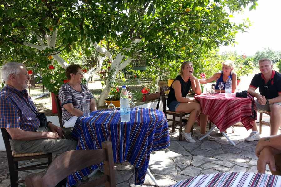 Destination Platanias Wine Tasting - Simple 8 EUR