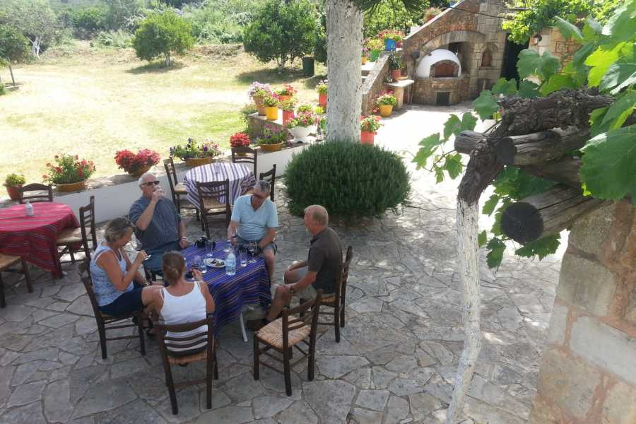 Destination Platanias Wine Tasting - Cheese Platter