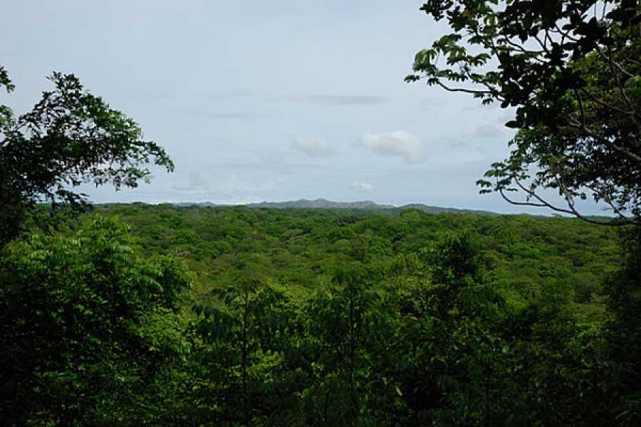 Tour Guanacaste National Park Hiking and Cultural Tour