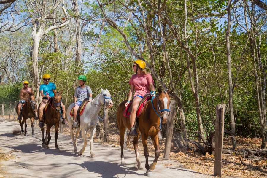 CongoCanopy.com ATV Canopy Zip-Line Horseback Combo