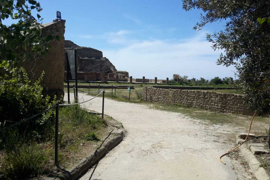 Campania Food & Travel Napoli Tra Archeologia e Leggenda