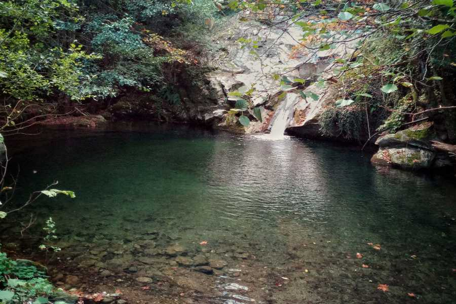 """Visit Greece Travel Hiking Tour """"Lost in the Forest"""""""