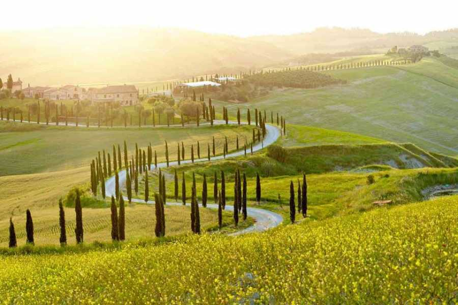 Enjoy Chianti Val D'Orcia  - Shared Tour