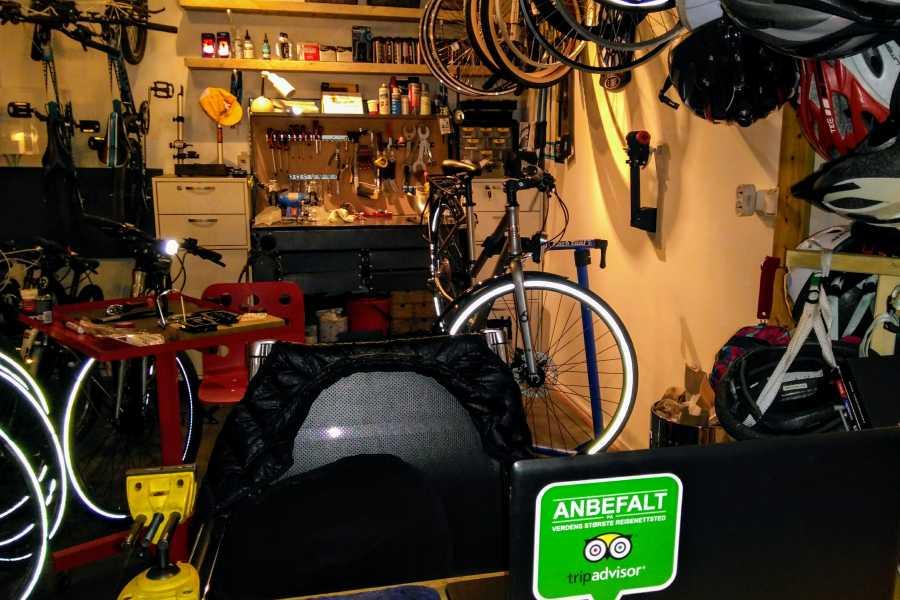 Viking Biking Sykkelreparasjon: Liten Service