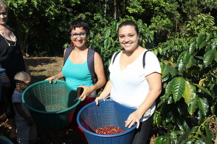 Uvita Information Center Coffee Tour