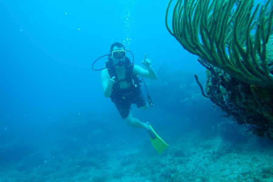 Aqua Mania Adventures 4. DISCOVER SCUBA DIVING