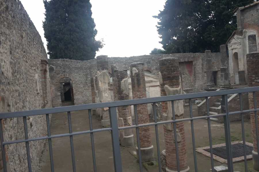 Campania Food & Travel Vesuvio Wine Tasting e Pompei Tour