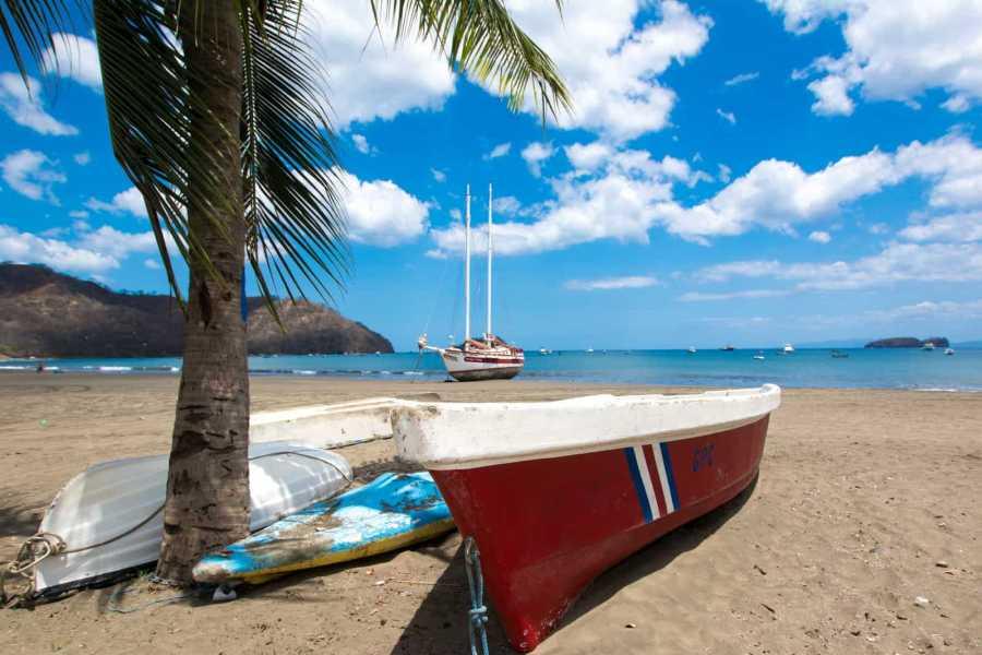 Tour Guanacaste On-Line Pacifico C-308