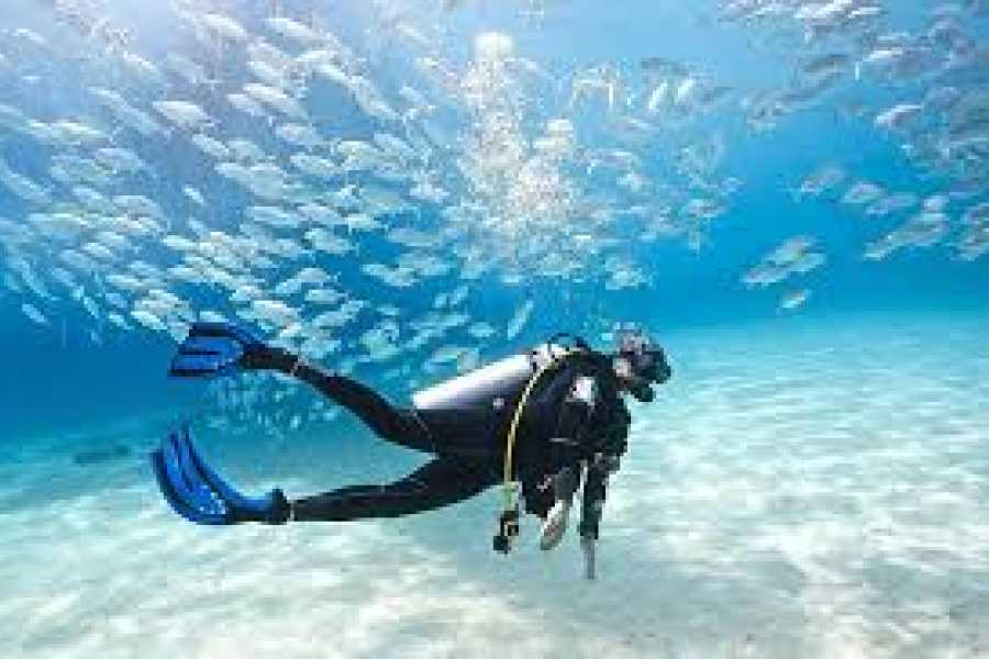 Marsa alam tours Marsa Alam Discover Scuba Diving Excursions 6-Hour Tour
