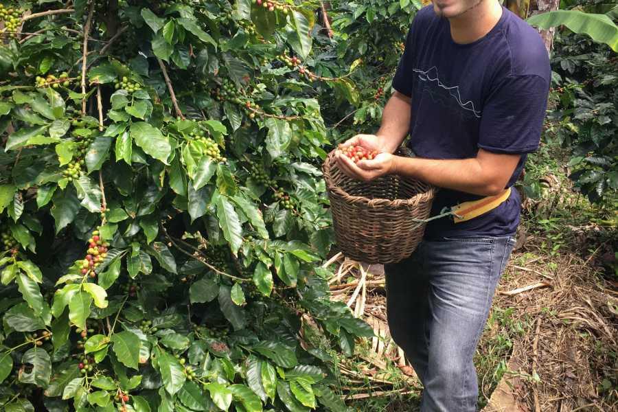 Andes Ecotours Traditional Bogotá Coffee Tour U$80