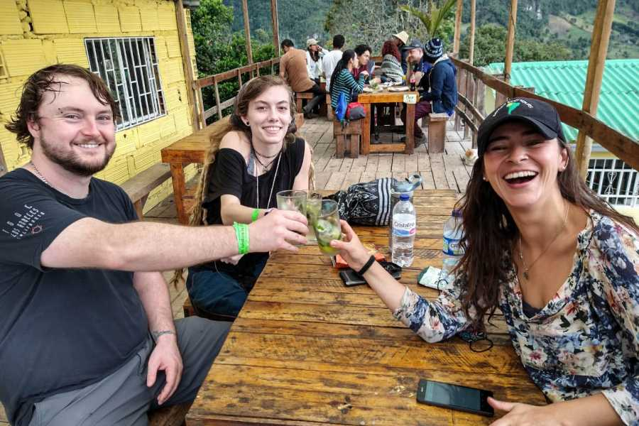 Andes Ecotours Choachí Cloud Forest & Waterfall Hike U$90