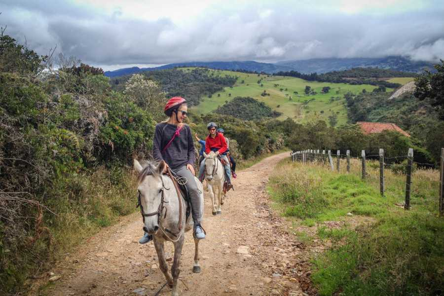 Andes Ecotours Andes Mountains Horseback Riding U$80