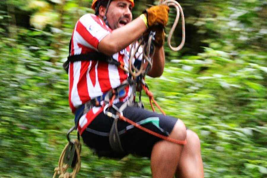 monteverde extremo Swing Extremo
