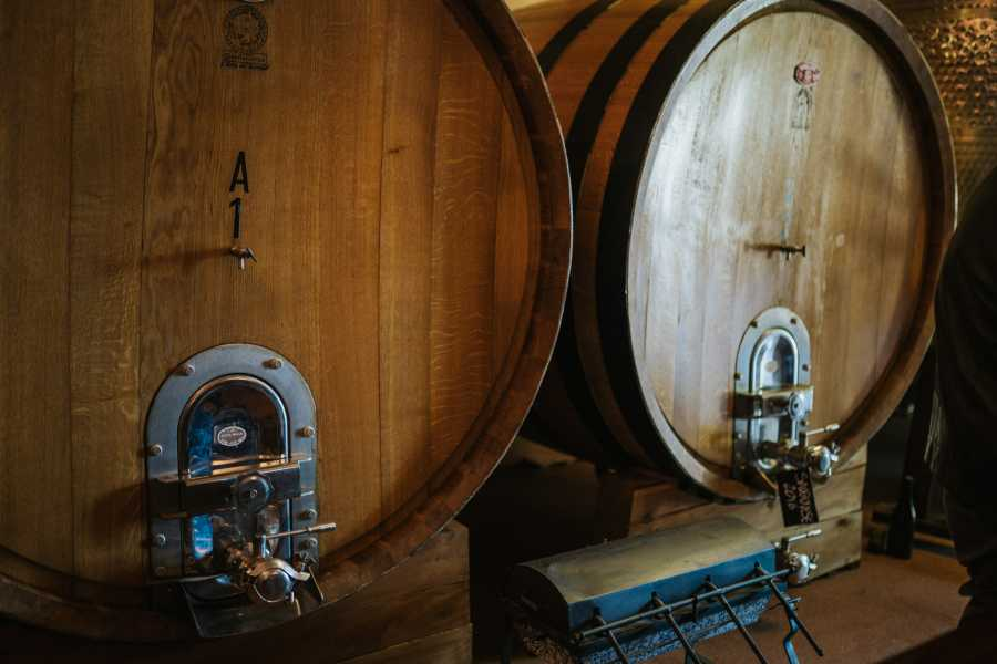 VisitRimini Experience In The Winery