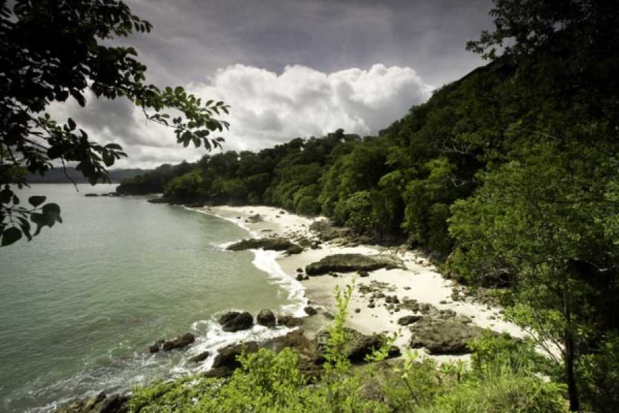 Tour Guanacaste On-Line Casa Los Monos