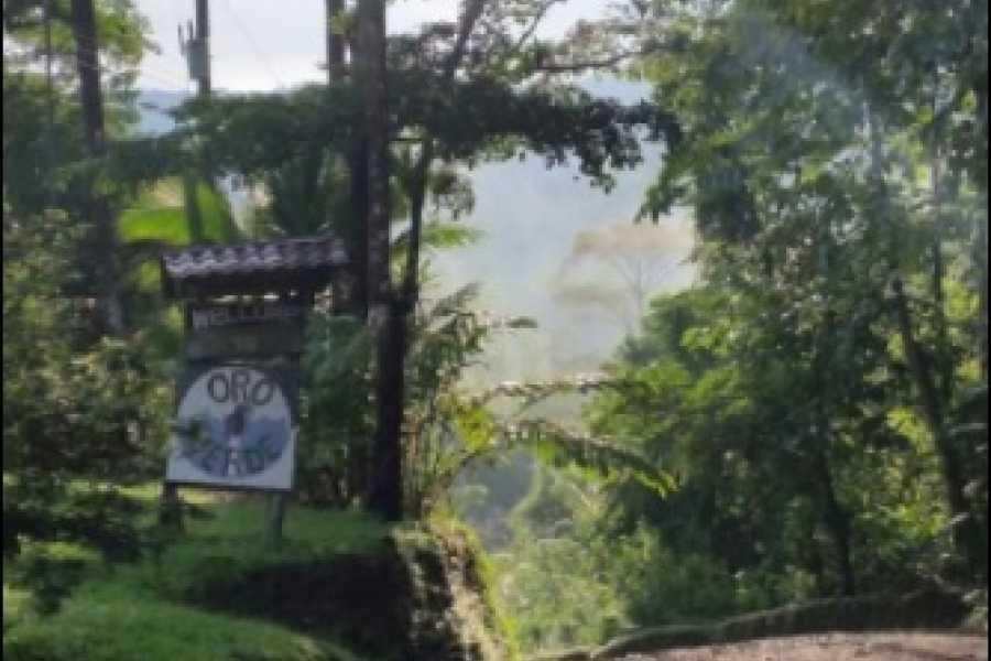 Uvita Information Center Oro Verde Biological Reserve