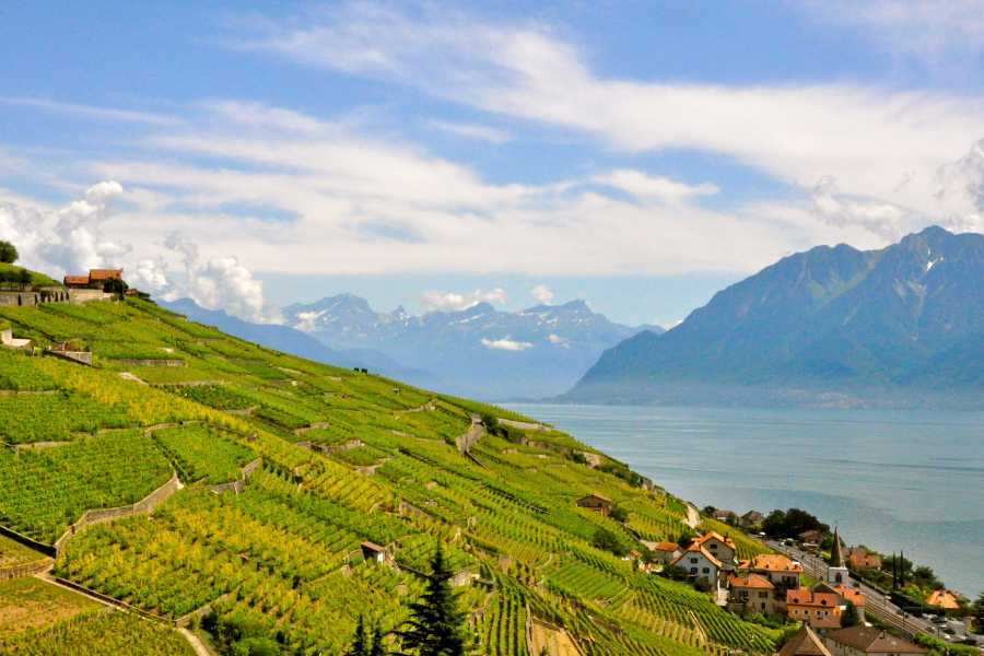 GVA Excursions Swiss Riviera Tour