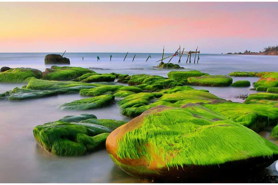 Viet Ventures Co., Ltd Photography Tour - Southern coastal Vietnam 4 days