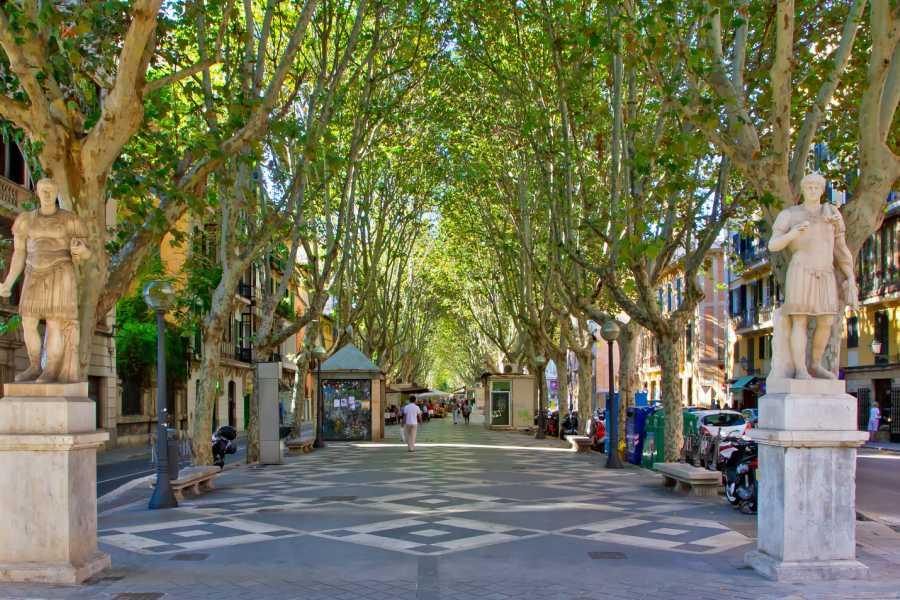 TourguideMe Fahrradtour Palma de Mallorca