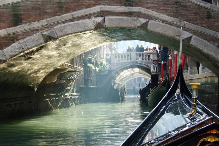 Venice Tours srl Charming gondola and Doge's Palace with guide book (skip the line)