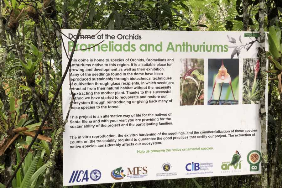 Medellin City Tours Amazing Arvi Naural Reserve