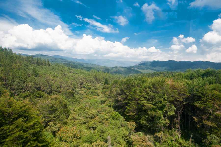 Medellin City Services Amazing Arvi Naural Reserve