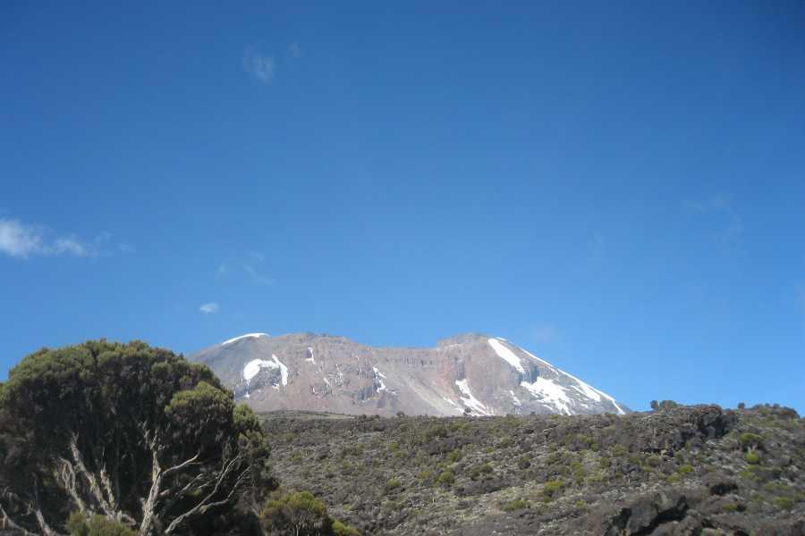 Absolute Adventure Kilimanjaro - Lemosho Route