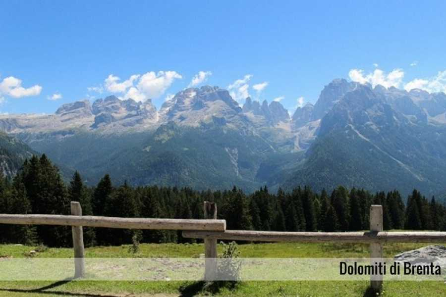 Enjoy33 Tour Dolomiti & Sapori Trentini | 1 giorno