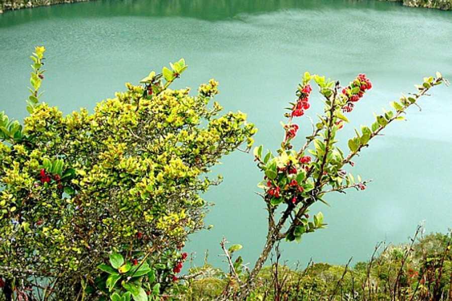 Medellin City Services Green Guatavita lake and reserve
