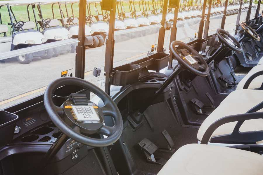 Krain Concierges 4-Person Golf Cart Rental