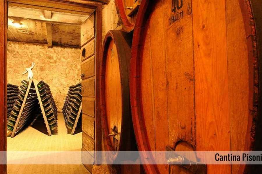 Enjoy33 Wine Tour Valle dei Laghi