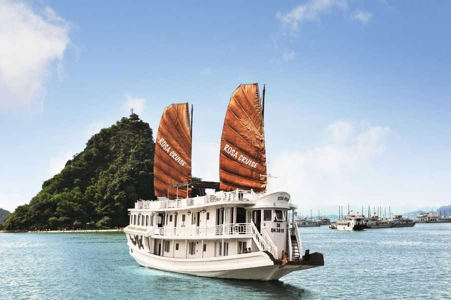 Vietnam 24h Tour Rosa Cruise 2D1N