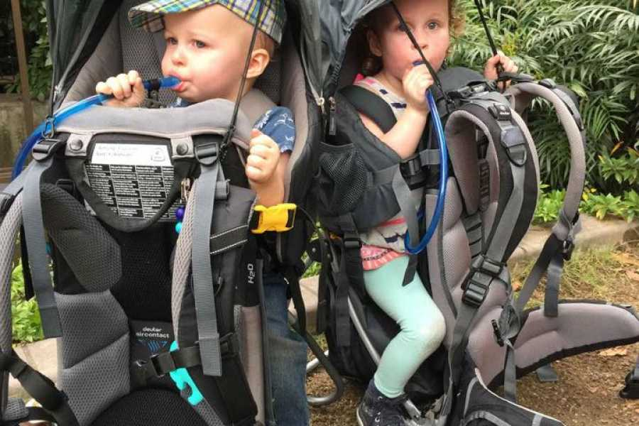 Forward Rent a baby carrier backpack