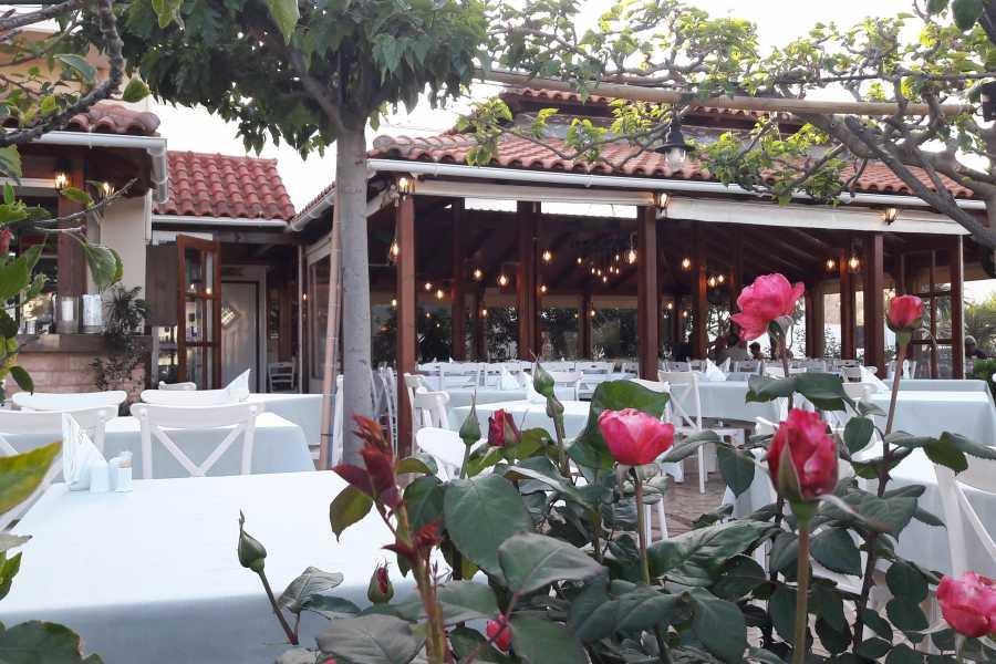 Destination Platanias Restaurang Drosia