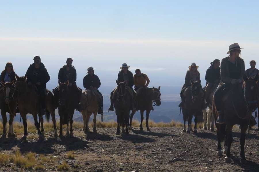 Ruta40Adventure Programa 1 Amanecer a Caballo - Uco Valley