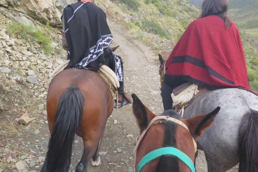 Ruta40Adventure Programa 3 Cabalgata Pampa del Durazno - Uco Valley