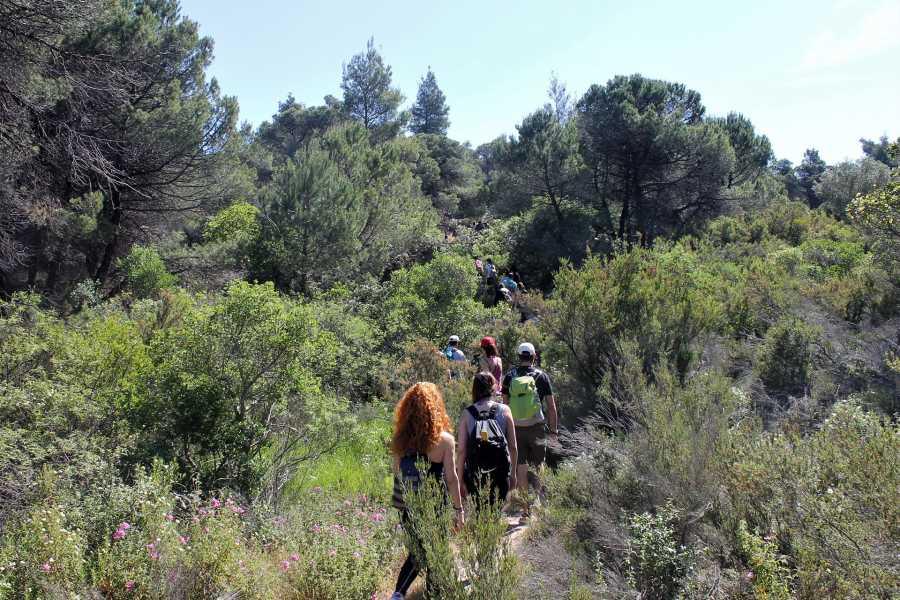 Grekaddict Akti Elia to Agios Pavlos Hiking Tour in Halkidiki