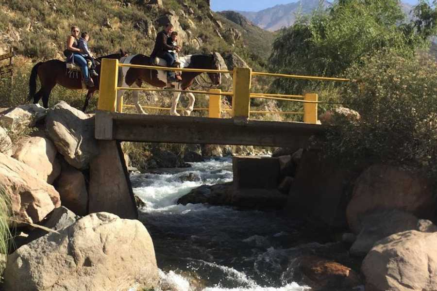 Ruta40Adventure Programa 7 Cabalgata Arroyo Grande - Uco Valey
